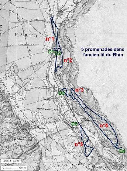 5 promenades dans l'ancien lit du Rhin