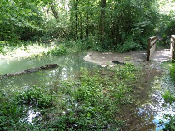 Après les pluies, risque d'inondation.