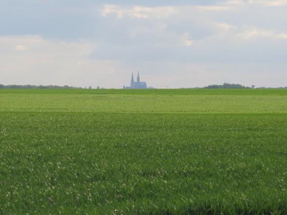 Cathedrale dans les flots de blé