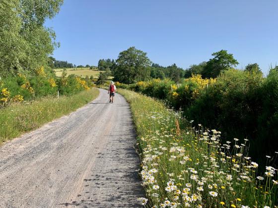 Large chemin ...