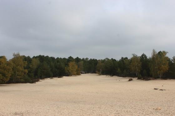Les sables du cul du chien