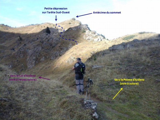 Pointe d'Ardens - Montée depuis le collet sans nom