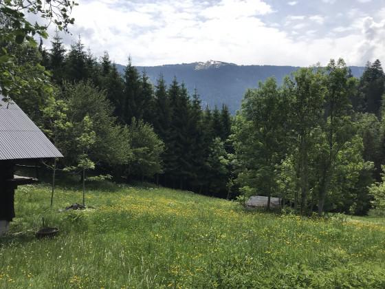 Vue sur le Mont Bisanne