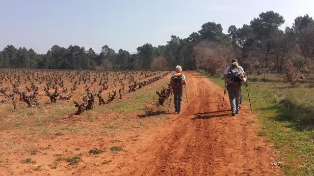 Recherche recherche personnes pour randonner en semaine for Recherche personne pour tondre pelouse