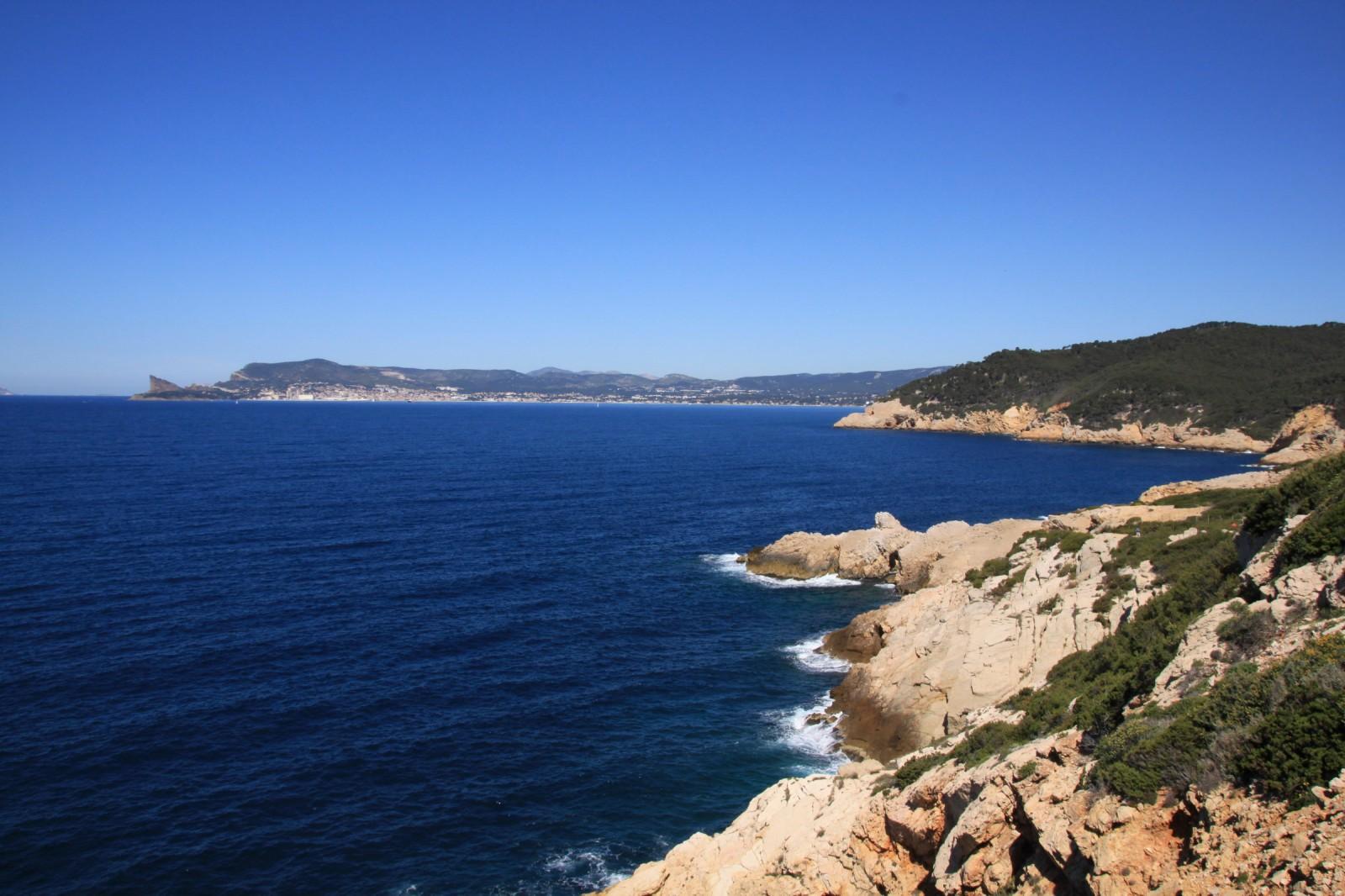 Photo entre vignes et bord de mer st cyr sur mer - Arbuste bord de mer ...