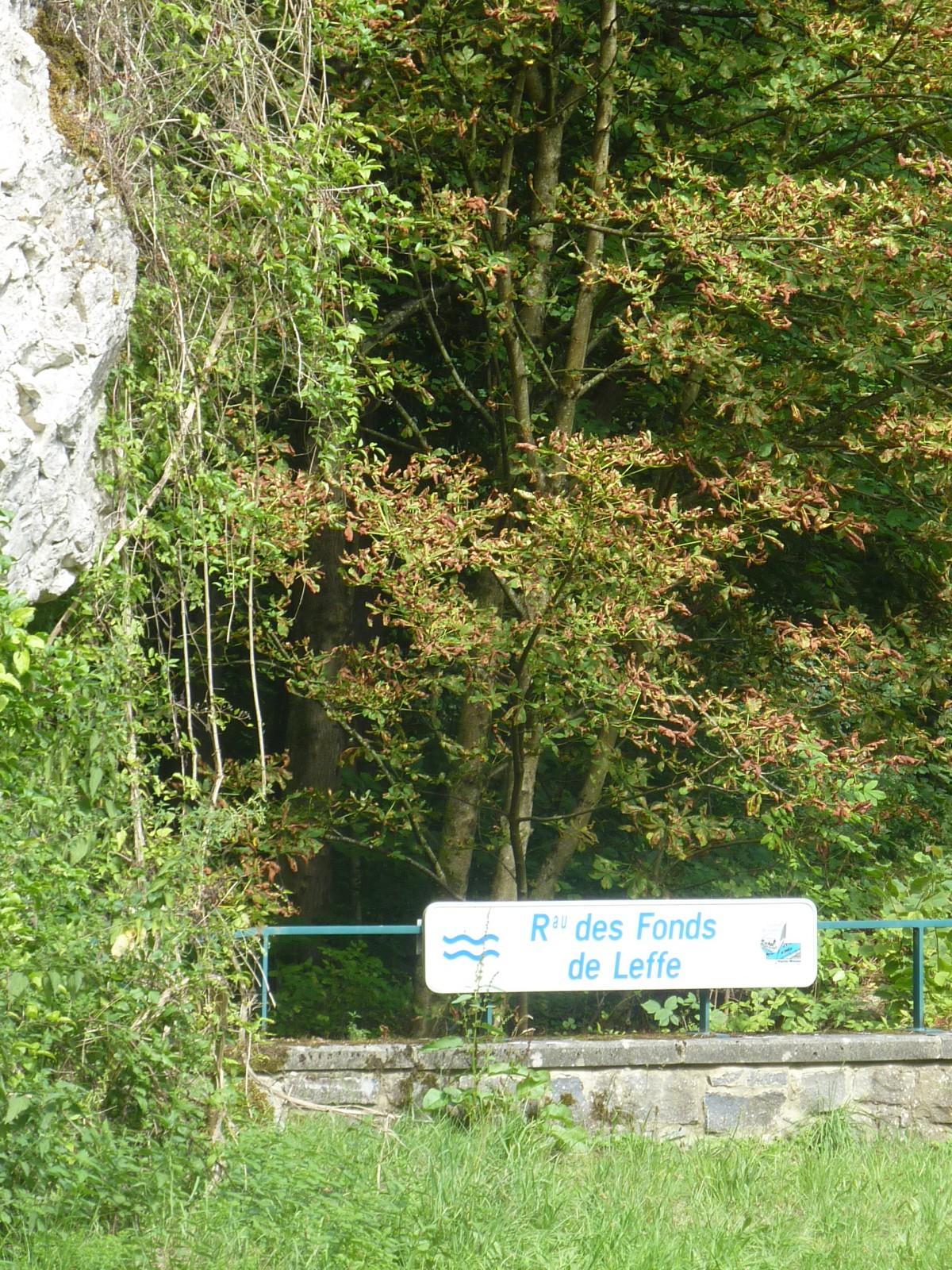 Photo le ruisseau des fonds de leffe for Les fonds des photos