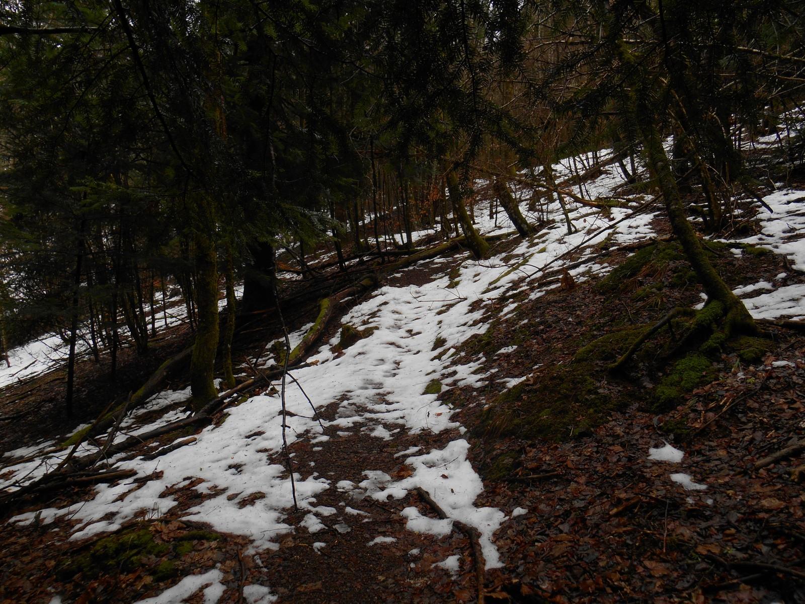 Photo paysage de fin d 39 hiver - Fin des soldes d hiver ...