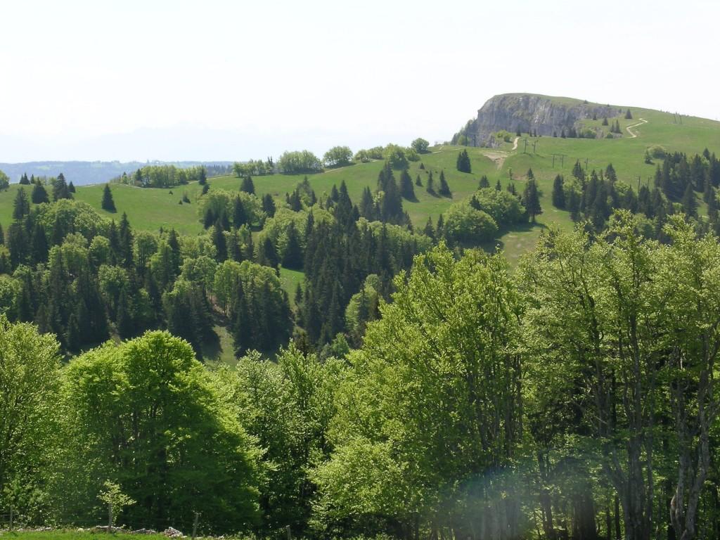 photo vu du mont d or depuis le sommet du morond