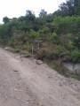 ::2:: Chemin muletier, sentier panoramique