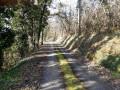 Route qui monte vers la Roche (entre les points 9 et 10)