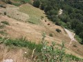 Exploitation agricole en Ardèche