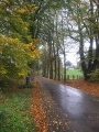 Parcours champêtre à Libramont-Chevigny