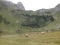 Alpage de Lovenex