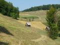 Les collines d'Alunis à Suplai