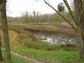 Ancien bassin des Damoiseaux