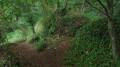 Autour de la vallée du Costour, de Mescalon et de l'ancienne carrière