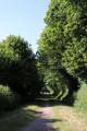 Ancienne voie de chemin de fer transformée en voie verte