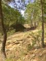 Anciennes mines de Carnoulès ...