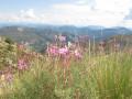 L'observatoire du Mont Chiran