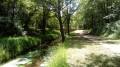 De Le Perray à Rambouillet par les étangs, les rigoles et la Drouette