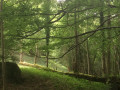 La Vallée D'Aure depuis Rebouc