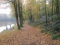 Au bord des étangs des moines