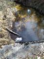 Ruisseaux de la Petite Leyre et le Peyronnet au départ de Luxey