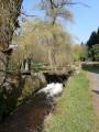 Le long du ruisseau du Breuil
