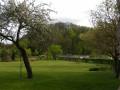 Bois de Saint-Roch