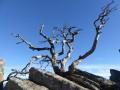 Au sommet du Rocher de Costaros
