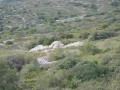 Autre cabane en pierres sèches