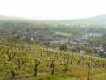 Avenay