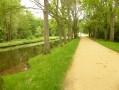 Avenue des Obstinés à Chantilly