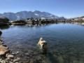 Baignade dans le Lac de l'Âne