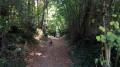 Dans les bois à l'Est et au Sud de Bouloc