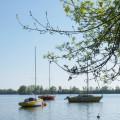 Circuit des oiseaux au confluent du Tarn et de la Garonne