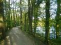 Bassin de la Boissière