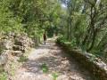 Le vallon de Cabriès