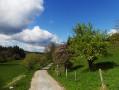 Beau paysage du Jura