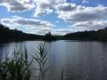 Bel étang