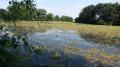 Belle vue sur un étang