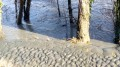 Petite boucle par le chemin de halage à Grenoble