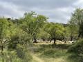 Aux alentours de Biscarrués - Aragon
