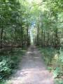 Bois des Terriers et patrimoine de Jouy-Mauvoisin