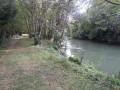 Bords de l'Aube à Lesmont
