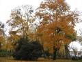 Jardin Jean de Berry