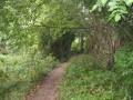 Marais des Picault