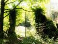 Bregille - Ruines Romantique