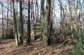 Cabane au fond des bois