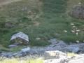 Cabane typique de berger